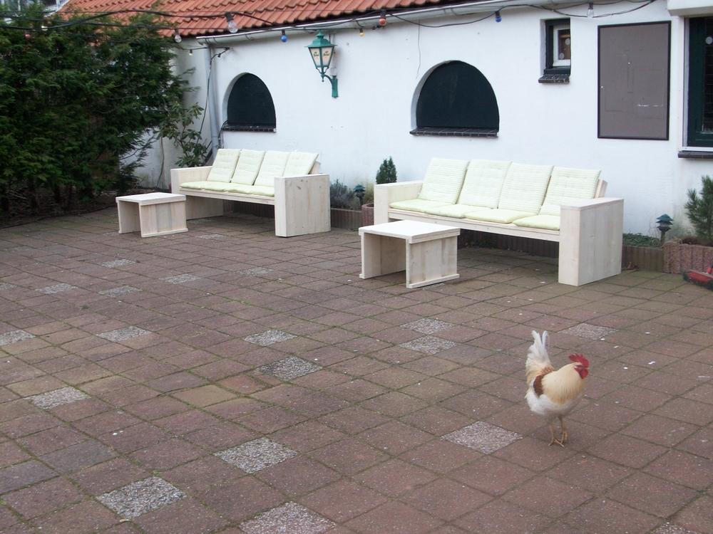 2 steigerhout lounegbanken en een kip