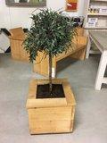 steigerhout plantenbak met plant en grond er in