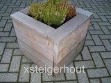 Plantenbak steigerhout met plant